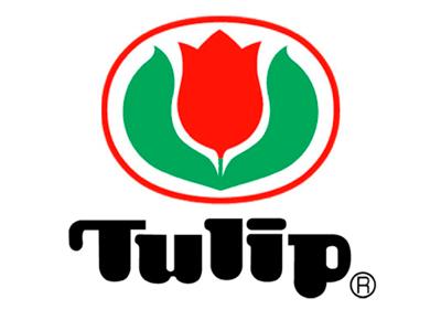 Tulip | интернет магазин Сотворчество